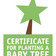 Donate a tree for the Sahara